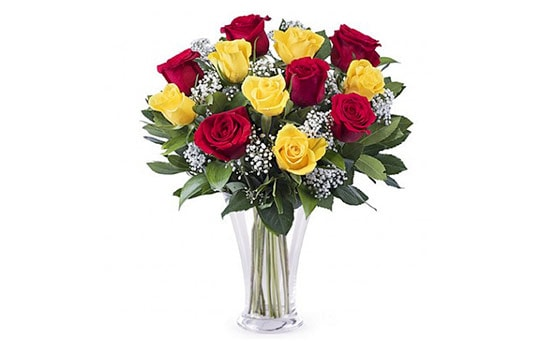 Red and Yellow Roses Meaning and Their Significance