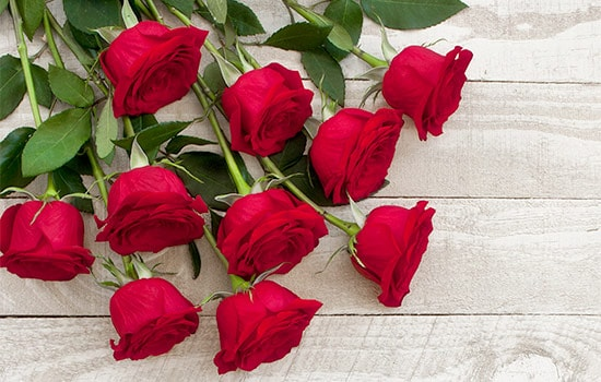 10 Red Roses Meaning