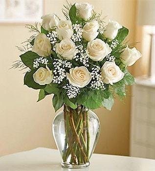 12 White Roses